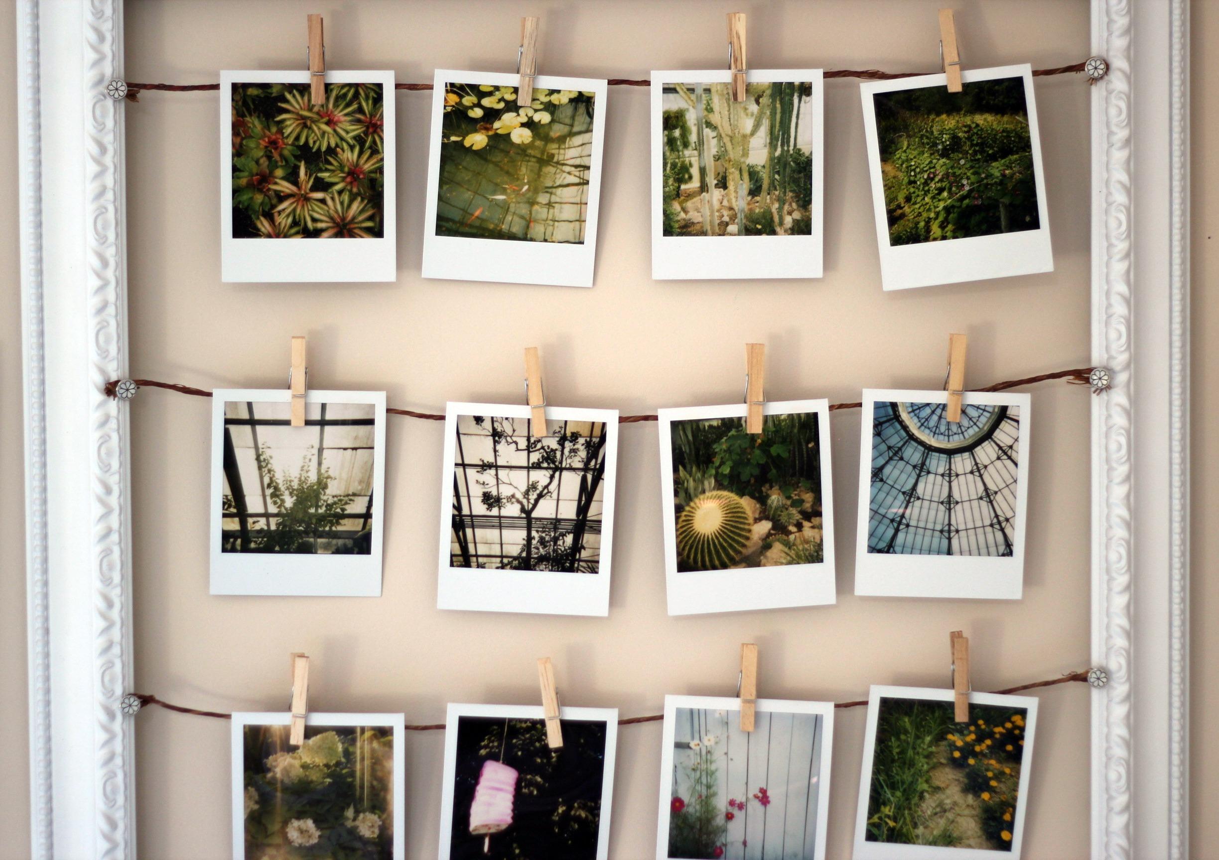 Фотокарточки на столе